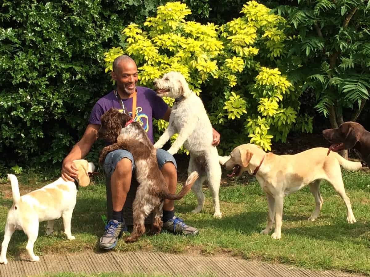fun in the garden with our daycare and boarding guests at eWoof