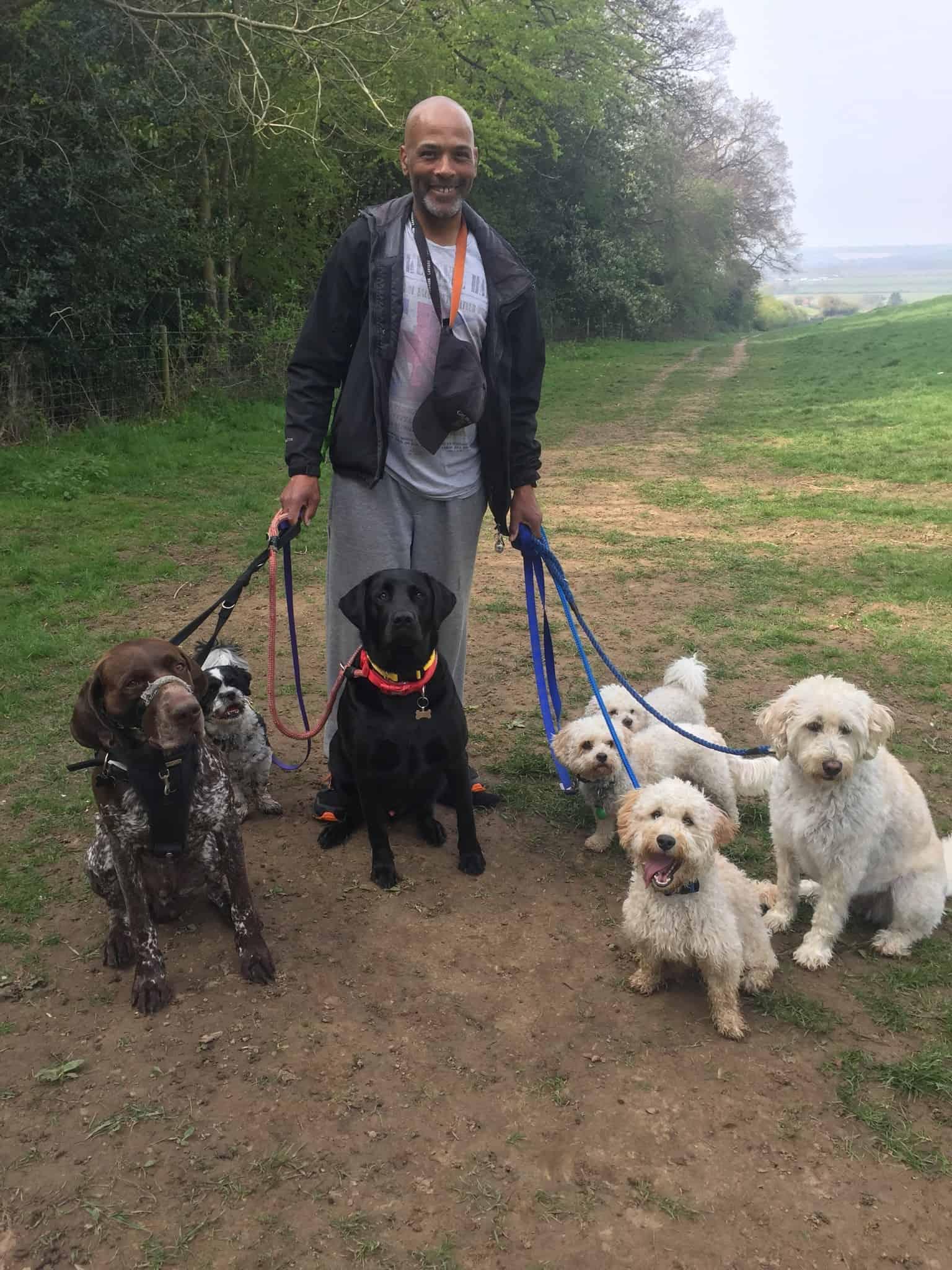 Find a dog walker